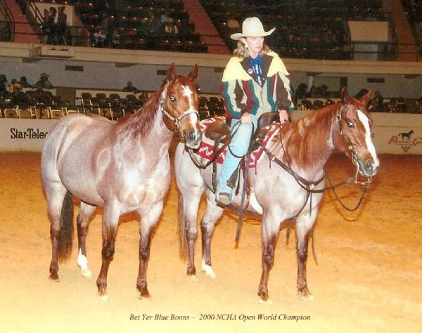 Oxbow Ranch - Lindy Burch - Cutting Horses For Sale
