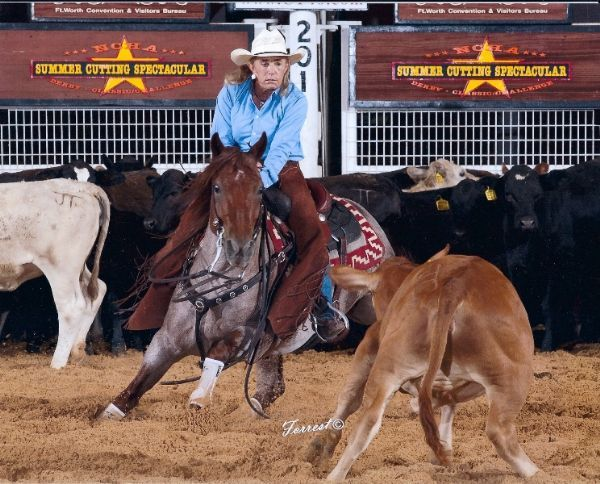 Quarter Horses Cutting