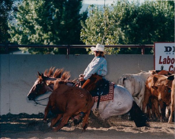 King Ranch Texas >> Oxbow Ranch - Lindy Burch - Cutting Horses For Sale